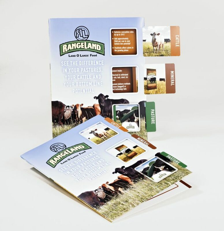 Sneller Creative Promotions - Interactive Marketing Collateral